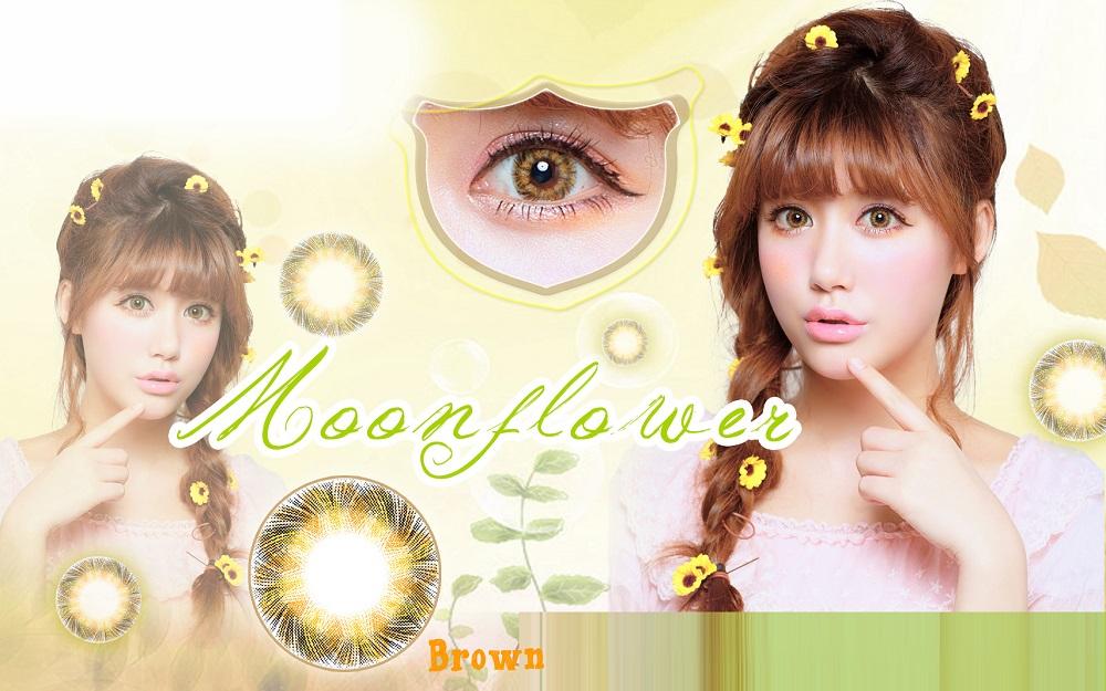 Moonflower drug